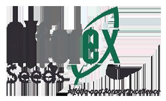 alforex-seeds-logo