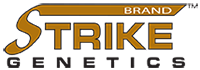 strike-logo-with-brand
